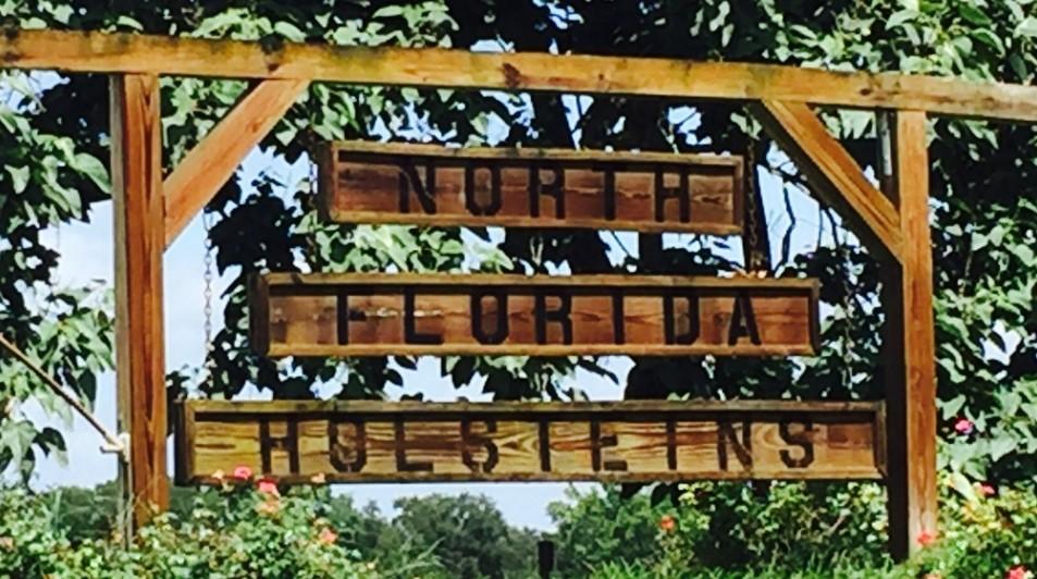 North Florida Holsteins: minden a menedzsmentről szól
