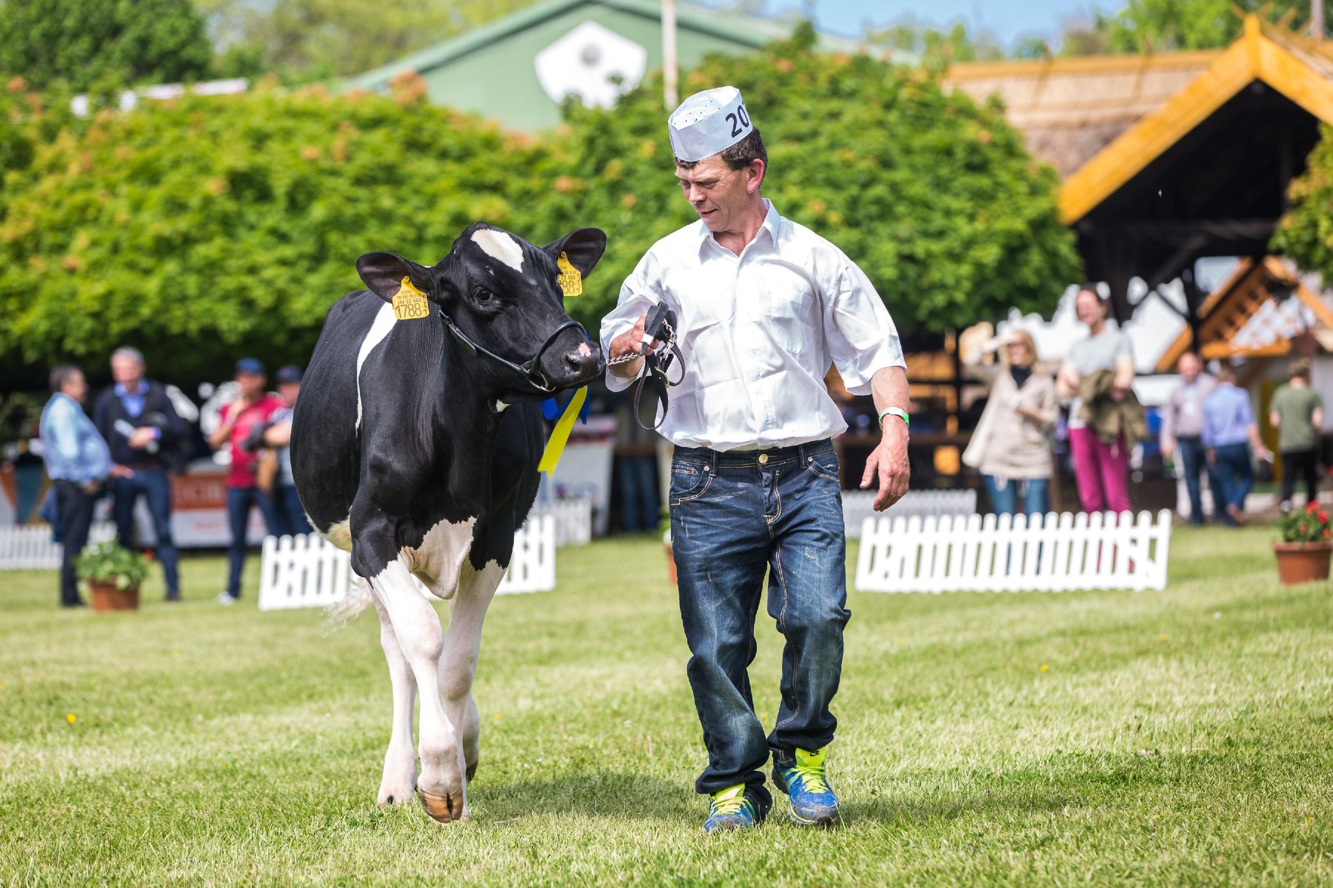 XXV. Állattenyésztési és Mezőgazda Napok - Hódmezővásárhely